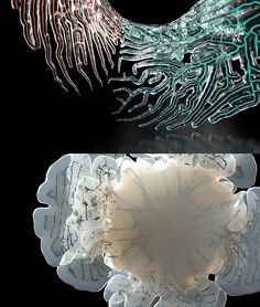 Neri Oxman - Wanderers on Behance Neri Oxman ~ Wanderers. In this project we collaborated with artist, scientist, researcher Prof. Neri Oxman from the MIT Media Lab and the Mediated Matter Group to create four grown and 3d printed wearables.