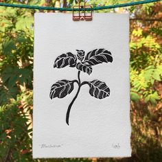Little fellas available on my shop 🌱❤️ . . #linocut #herbal #etsy #printmaking #etsynewbie #linogravure #grabado #hahnemühle #forest #store… Linocut, Daydream