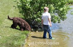 A boy, his dog and the water! It has been a summer well spent!