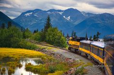 Alaska Railroad - I once worked as a tour guide on this train, and it is a WONDERFUL ride because there are so many rivers, waterfalls, and other beautiful scenes that you can only see from the train.  The highway is faster, but if you'd like an enjoyable trip, take the train.  And don't pass up the chocolate truffle cake in the dining car... Good cheeseburgers too.