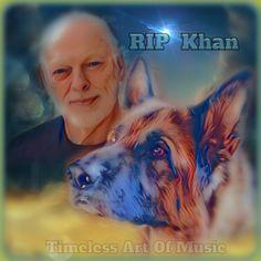 Goodbye Khan By teresanunes