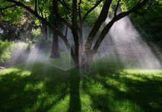 Benefits of Irrigation System