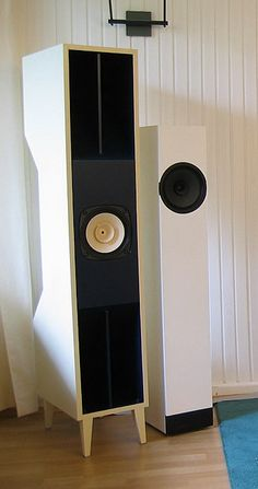 Fostex FE206 full range speakers.