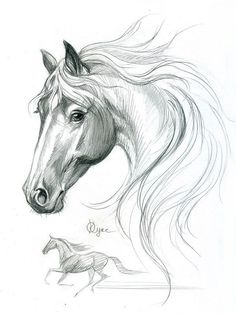 """бумага формата А4,простой карандаш,2009 год """"Some dreaming state"""", """"Discover thousands of images about Draw a horse"""", """"Stallion Stock vektory, snímky"""