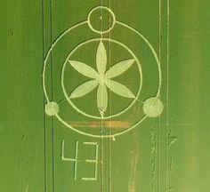 Crop Circle at Prudentópolis, Paraná, Brazil, Reported 27th September 2016