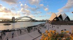 Beautiful panoramic view of Sydney Harbour. #sydneyoperahouse#sydneyharbourbridge#Sydney#Australia#wanderlust#like4like#follow4follow#amazing#love#vividsydney#Melbourne#Canberra#Brisbane#Adelaide#Perth#Hobart#Darwin#GoldCoast#London#Paris#Unitedkingdom#France#unitedstatesofamerica#SouthAfrica by nabeel.on.fire_49 http://ift.tt/1NRMbNv