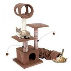 Buy Activity Lounging Tower with Tunnel and Hide Away. Pet Supplies - Activity Lounging Tower with Tunnel and Hide Away. Activity Lounging Tower with Tunnel and Hide AwayFeatures: Dimensions: 18 W x 18 D x 46 H Attractive style, high quality and a variety Cat Tree Condo, Cat Condo, Cat Activity Centre, Large Cat Tree, Cat Perch, Cat Towers, Wood Post, Pet Furniture, Furniture Ideas