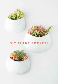 Form some plant pockets to hang on your wall.