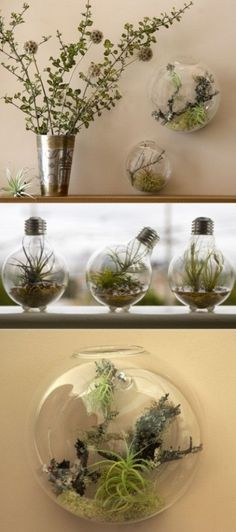 I like this because of the foot stoppers they put on the light bulb ones. That's way cuter/smarter than the mason jar lid I think!