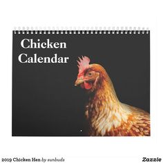 This 2019 wall calendar feature is Chicken Hen photography.Makes a great gift for chicken lovers. Chicken Names, Chicken Signs, Chicken Humor, Easter Calendar, Easter Egger Chicken, Joel Salatin, Crazy About You, Keep It Cleaner, Great Gifts