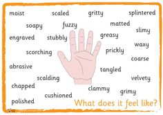 Teacher's Pet Displays » Senses Descriptive Mats/Posters » FREE downloadable EYFS, KS1, KS2 classroom display and teaching aid resources » A Sparklebox alternative