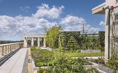 The rooftop garden at the Community Health Center in Middletown, CT (via Hartford Business Journal)