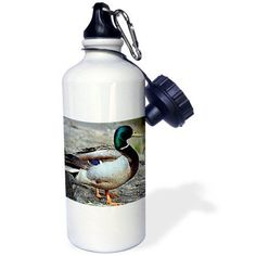 3dRose Duck, Sports Water Bottle, 21oz