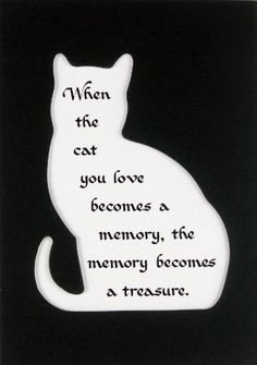 """When the cat you love becomes a memory, the memory becomes a treasure."""