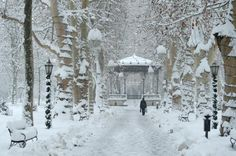 Winter fairytale in Zagreb, Zrinjevac http://smart-travel.hr/en/europe/croatia/city-of-zagreb/