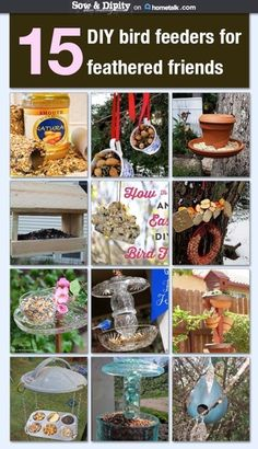 15 DIY bird feeders from Hometalkers