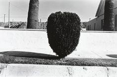 Henry Wessel, Jr., Untitled, Yuma, Arizona. 1968.
