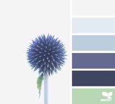 {} Flora tonos imagen a través de: @cherfoldflowers