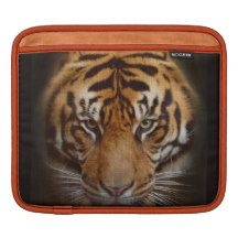 Staring Tiger Wildlife Fine Art iPad Sleeve