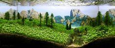 Plateau by Mustafa Erdogar - Aquascape - PHUNRISE