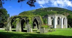 Margam Country Park, Port Talbot, South Wales, the best place to clear your head after a full day of work