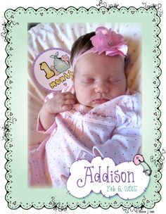 Our 'Baby Month Stickers' are going to be used to announce baby Addison's journey through her first year!