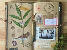 Scrapbook page ideas, light brown squared paper in a journal, green leaves, photos want to make your own travel diary? inspirational ideas in 60 photos Packing Tips For Travel, Travel Essentials, Travel Scrapbook, Scrapbook Pages, Scrapbooking, Midori, Journal Design, Journal Ideas, Travelers Notebook