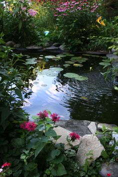 Besides, creating a beautiful Koi pond is itself a hobby for you. But it is not a create-and-forget sort of hobbies. Rather, you need to be extremely careful for the living beings inside your fondly created pond. Backyard Water Feature, Ponds Backyard, Garden Ponds, Backyard Ideas, Koi Fish Pond, Fish Ponds, Garden Pond Design, Landscape Design, Landscape Plans