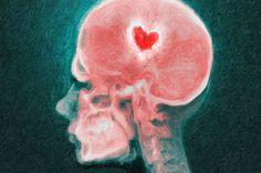 El amor modifica el cerebro.