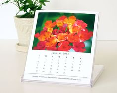 Garden Flowers 2013 Desk Calendar cd case by MaryFosterCreative, $20.00