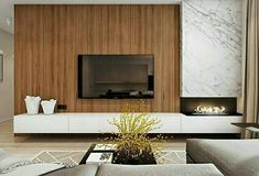 TV wall and fireplace