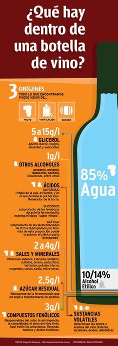 ¿Qué hay dentro de una botella de vino?  #taninotanino #vinosmaximum #maximum