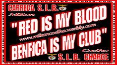 Red Is My Blood, Benfica Is My Club 01 - Milton Coelho HD 1366x768 Wallpaper