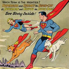 For National Comic Book Day, Our 5 Favorite Comic Book Cats | Catster