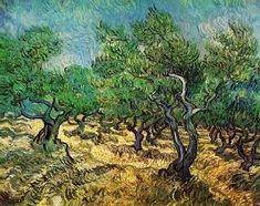 Vincent van Gogh - Oliveraie