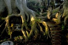 I would love my indoor garden to look similar to this LOTR Lothlorien set.  Inside that tree hole would be a reading/sleeping nook.  On the right, it would be stair waterfalls with color statues like in ancient times.  I would personally paint the ceramic statues in acrylic paints to give it a realistic look but have the clothes in a matted ceramic glaze paint with pearl and gold overglaze accents.