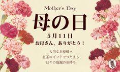 母の日ギフト トップ画像 Sale Banner, Web Banner, Banners, Sale Campaign, Bussines Ideas, Web Design, Graphic Design, Mom Day, Mother And Father