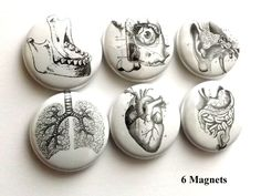 Human Anatomy Gift him medical student button pins lungs anatomical heart party favor magnets goth halloween stocking stuffer men rn md pa - Herz Science Teacher Gifts, Stocking Stuffers For Men, Human Body Anatomy, Lunge, Heart Party, Medical Anatomy, Anatomical Heart, Medical Science, Medical Art