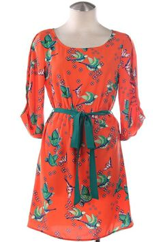 hummingbird print spring dress