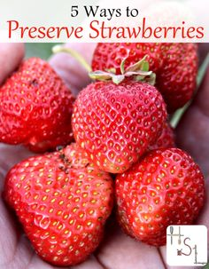 Make the most of that strawberry harvest with these 5 ways to preserve strawberries for the winter ahead.
