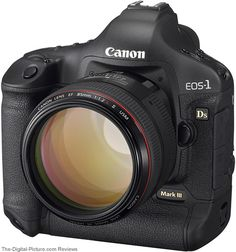 Digital SLR Cameras For Beginners. Photography is a great hobby but choosing the best digital SLR camera for beginners can be tricky. With just a basic digital camera you can take great phot Camera Hacks, Camera Gear, Slr Camera, Foto Canon, Reflex Camera, Camera Photography, Photography Tips, Vintage Cameras, Travel Photography