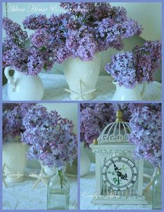 Lilacs are always so lovely