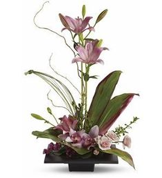 Imagination Blooms - T256-1A ($74.66) - This towering topiary of asiatic lilies, orchids and roses– artistically arranged with tropical greenery– is a unique gift that celebrates the spirit of creativity.