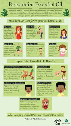 Peppermint essential oil has tons of amazing health benefits and uses. This guide shows you all of the research and facts behind peppermint oil. Essential Oils Guide, Essential Oil Blends, Essential Oils For Constipation, Oregano Essential Oil, Lemongrass Essential Oil, Young Living Oils, Young Living Essential Oils, Peppermint Essential Oil Uses, Doterra Peppermint