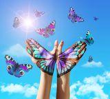 Cloud Computing: Transformation zum Festpreis immer beliebter  - it-daily.net