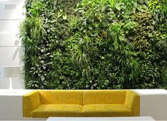 Interior Plant Wall?!?! Yeessssss!!!! <3 So magical!!!