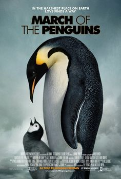 March of the Penguins (2005) - IMDb