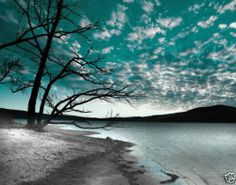 Black White Teal Sky Lake Tree Wall Art Home Decor Matted Picture Teal And Grey, Black And White, Color Splash, Color Pop, Cool Pictures, Beautiful Pictures, Flower Pictures, Beautiful Scenery, Beautiful Homes