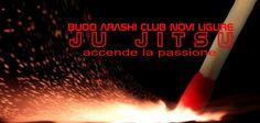 JU JITSU accende la passione   #budoarashinovi #jujitsu #artimarziali #martialarts #jujitsunovi #martialartsnovi