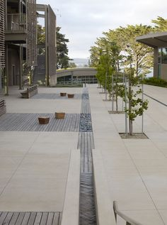 Nueva School by Andrea Cochran Landscape Architecture , via Behance